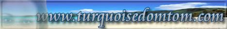 Découverte des DOMTOM à travers l'histoire, la musique des artistes connus et peu connus, la littérature, les recettes culinaires, les célébrités sans oublier l'histoire de l'Abolition de l'esclavage et les Actualités du jour. Un forum de discussions et un chat pour communiquer. N'oubliez pas de signer le livre d'or. Turquoise: Une visite s'impose.