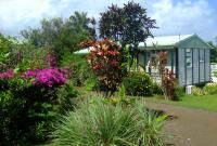 BUNGALOWS LES FRUITS DE GOYAVE Guadeloupe Antilles